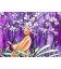Forêt d'Orchidées